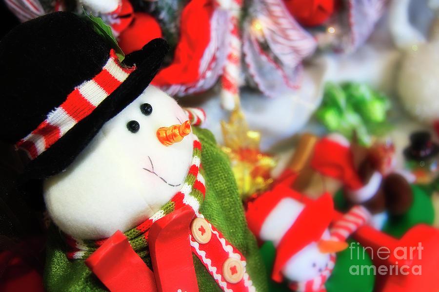 Snowman For Christmas Photograph