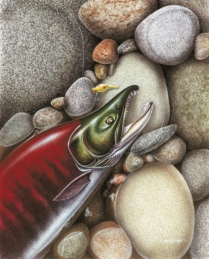 Jon Q Wright Sockeye Salmon Red Alaska Fish Fishing Rocks Stream River Spawn Spawning Painting - Sockeye Salmon by JQ Licensing