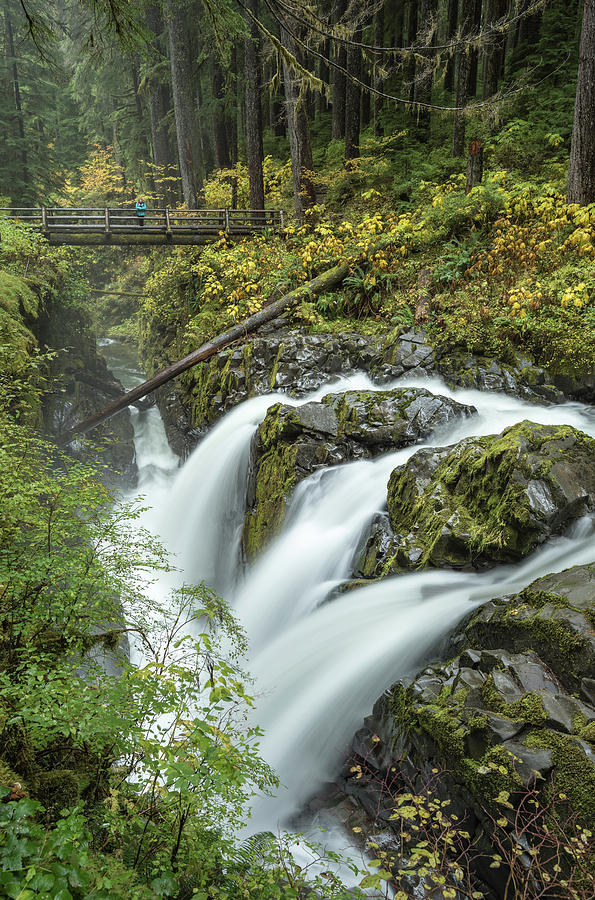 Sol Duc Falls - Washington Photograph
