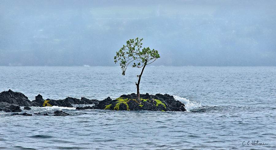 Hawaii Photograph - Solitude In Hilo Bay by Christopher Holmes