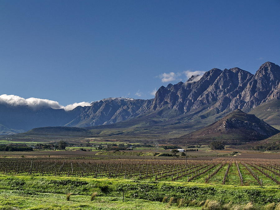 South african plain landscape photograph by phil stone for Landscaping rocks cape town