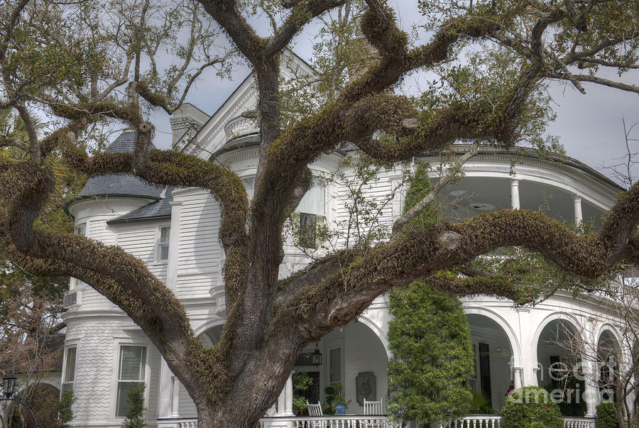 Southern Antebellum Home Photograph