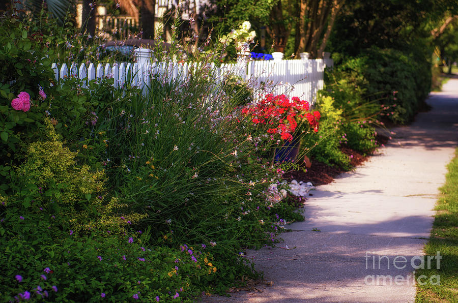 Southern Flower Picket Fence Photograph