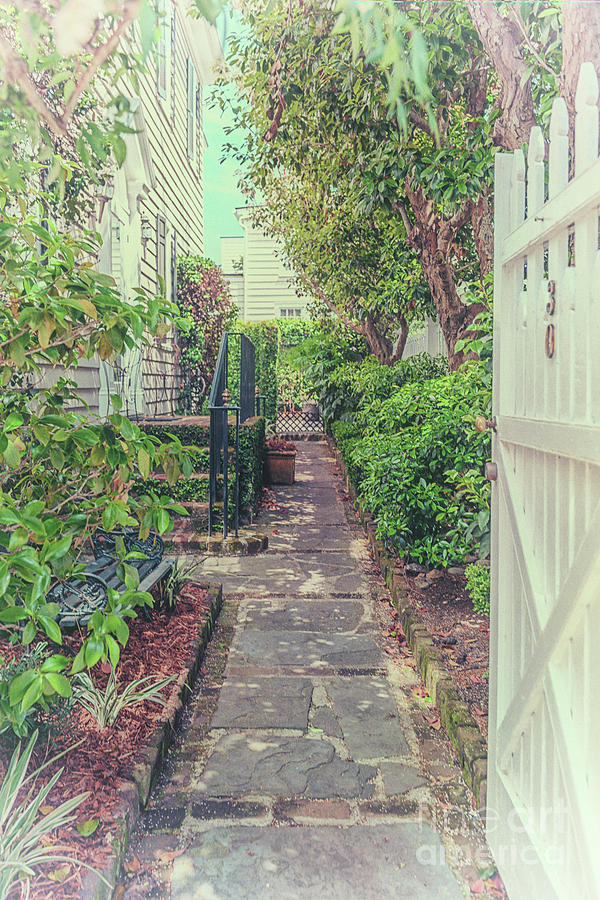 Southern Magical Charleston Garden Side Entrance Photograph