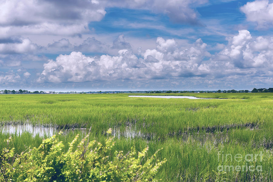 Southern Marsh Lowcountry Tides Photograph