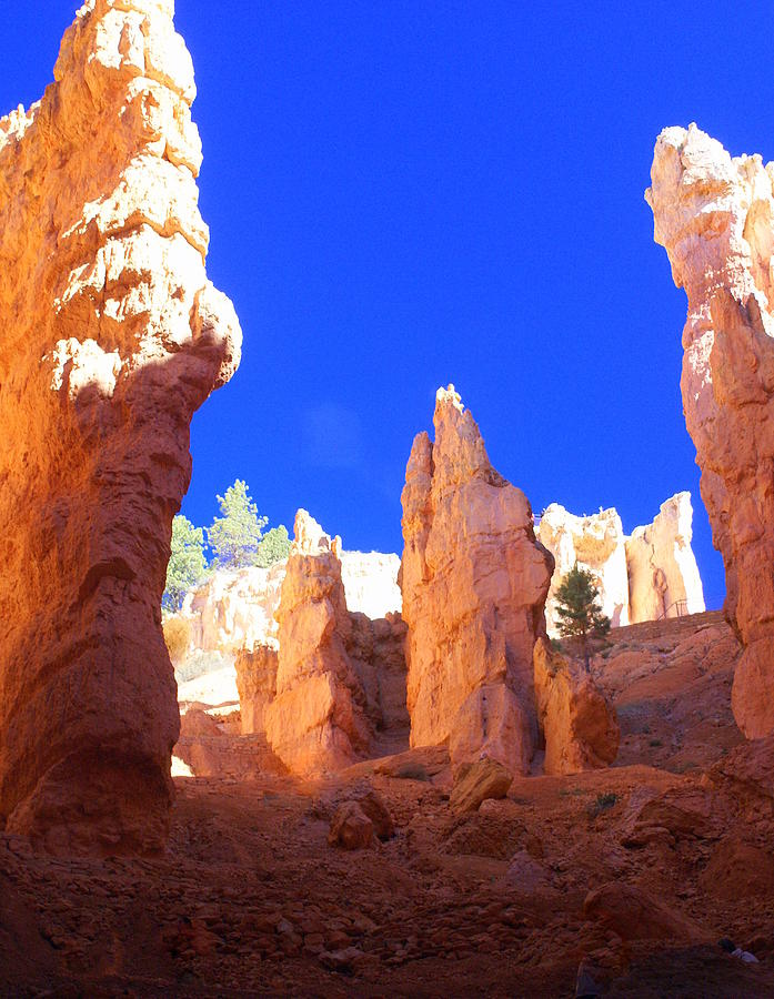 Bryce Canyon National Park Photograph - Spires by Marty Koch