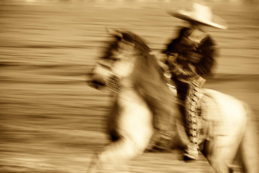Equine; Horses; Charro Photograph - Spirit Of The Charro3 by Nick Sokoloff