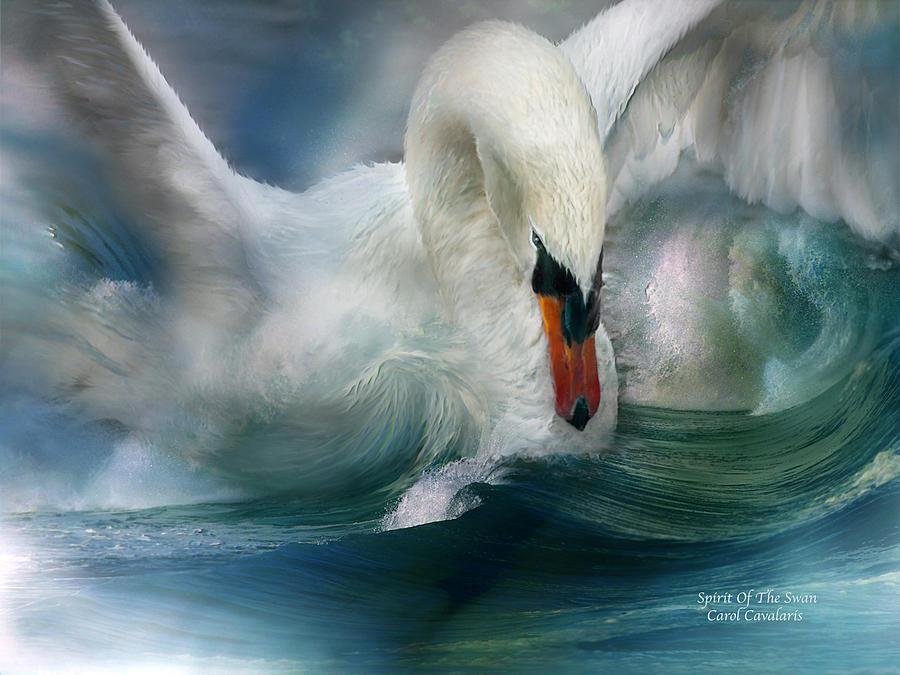 Swan Mixed Media - Spirit Of The Swan by Carol Cavalaris