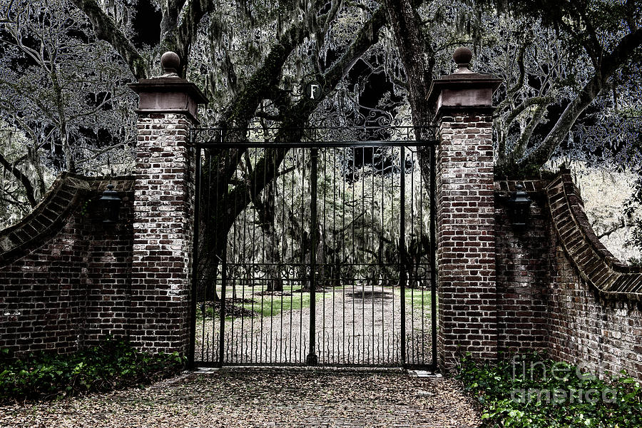 Spooky Fenwick Castle Gate Photograph