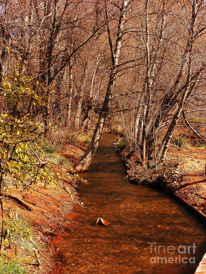 Oak Creek Photograph - Spring At Red Rock Crossing by Marilyn Smith