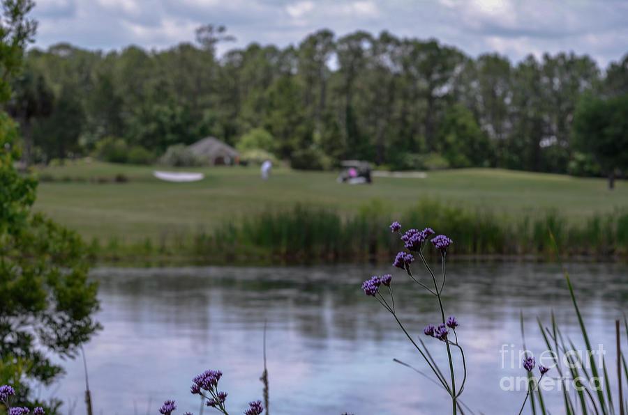 Spring Golfing Photograph