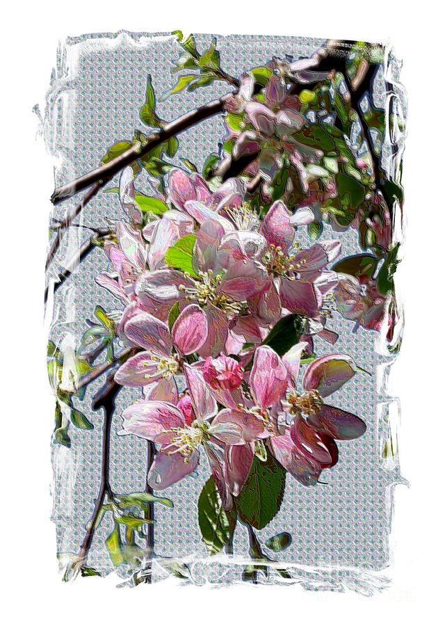 Spring Blossoms Digital Art - Spring Is Melting Away by Carol Groenen