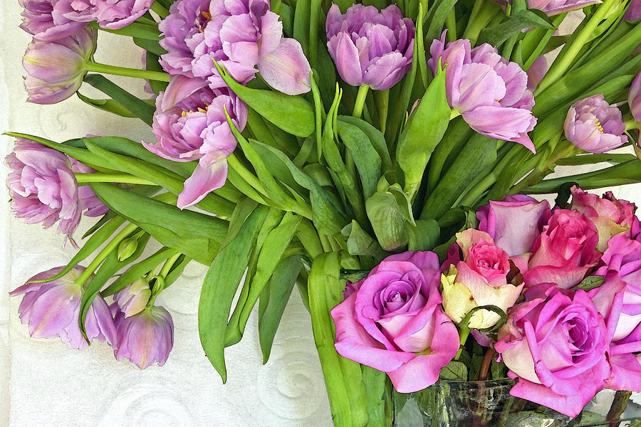 Spring Roses And Tulips Photograph