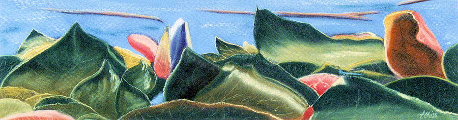 Landscapes Pastel - Spring Waterlilies by Jan Amiss