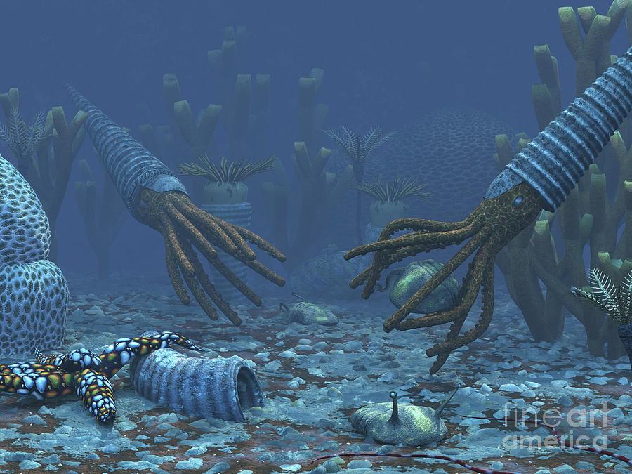 Squid-like Orthoceratites Attempt Digital Art