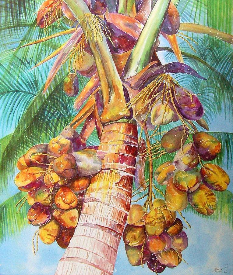 Coconut Tree Painting - Squires Coconuts by AnnaJo Vahle