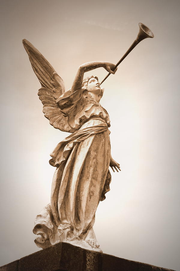 St Bernard Catholic Cemetery Angel - Sepia is a photograph by Beth ...