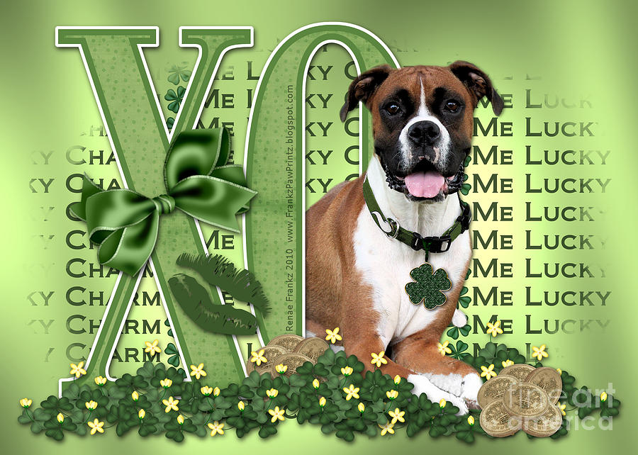 St Patricks Day - My Boxer Is Me Lucky Charm Digital Art