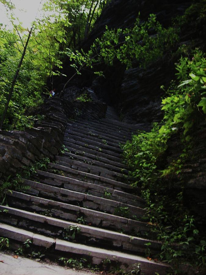 Watkins Glen Photograph - Stairway To Watkins 2 by InTheSane DotCom