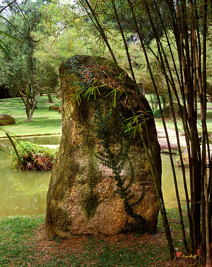 Standing Stone Photograph - Standing Stone With Fern And Bamboo 19a by Gerry Gantt