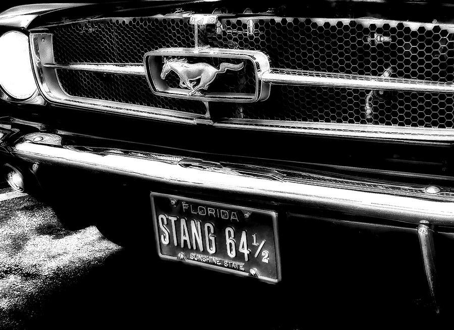 Mustang Photograph - Stang by Kenneth Krolikowski