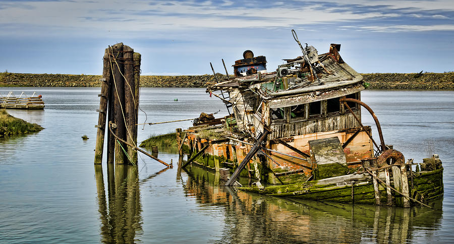 Mary D Hume Photograph - Still Afloat by Heather Applegate