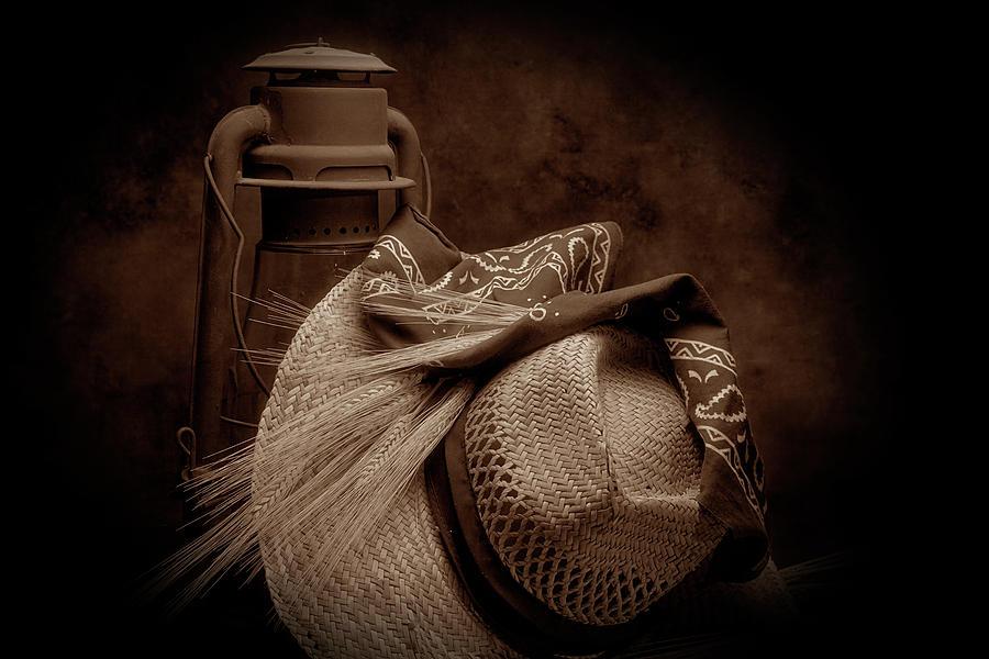 Wheat Photograph - Still Life With Wheat II by Tom Mc Nemar