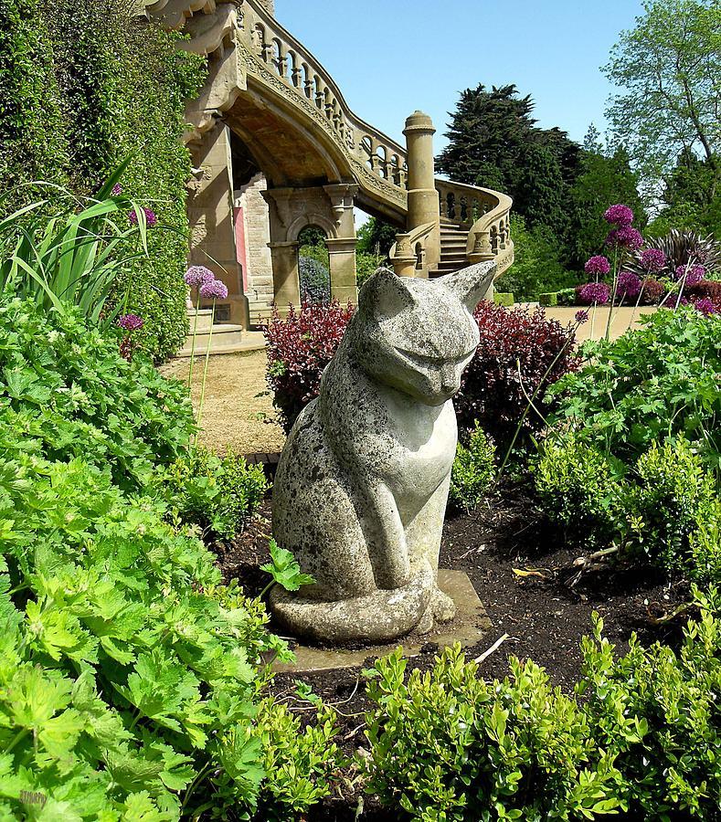 Statues Photograph - Stone Cat by Patrick J Murphy