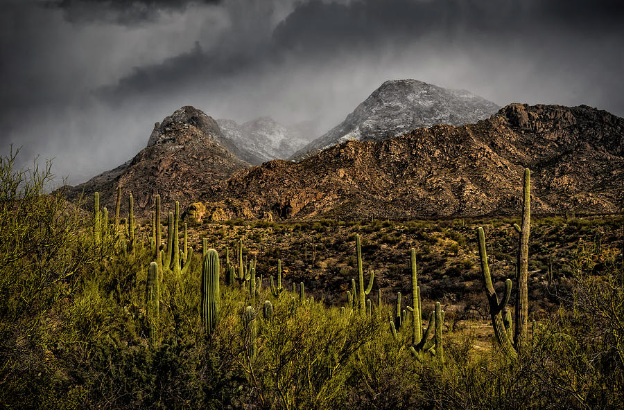 Storm Over Catalinas 15 Photograph