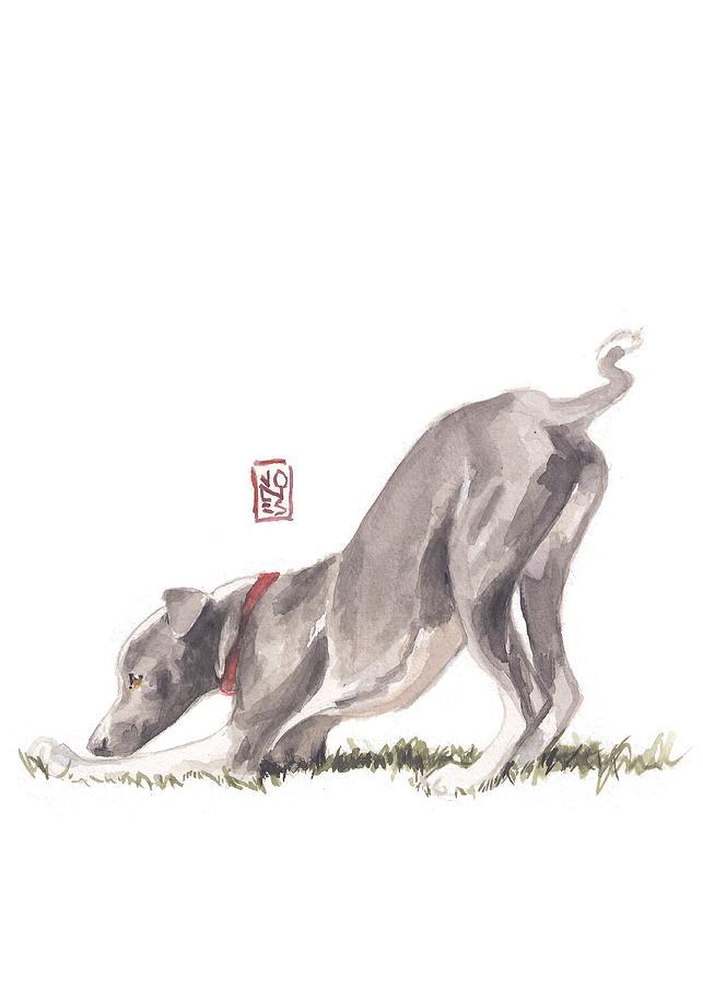 Italian Greyhound Painting - Stretching Italian by Debra Jones
