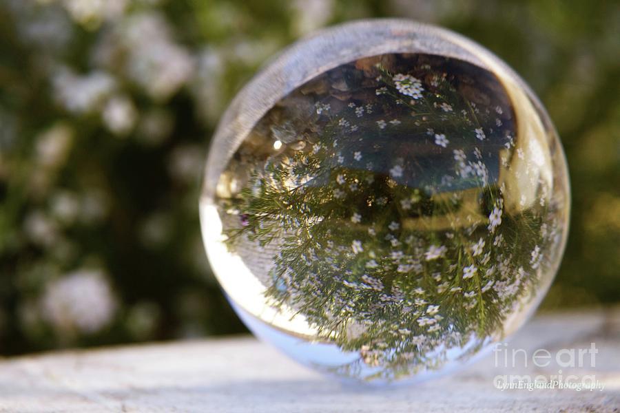 Studies In Glass ...springtime Photograph