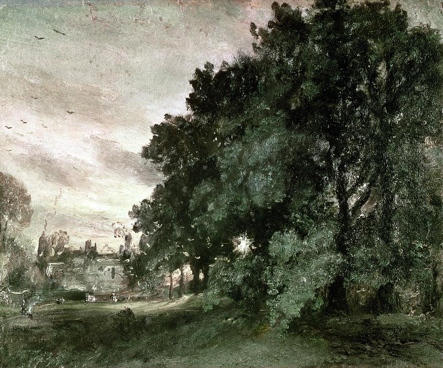 Study Painting - Study Of Trees by John Constable