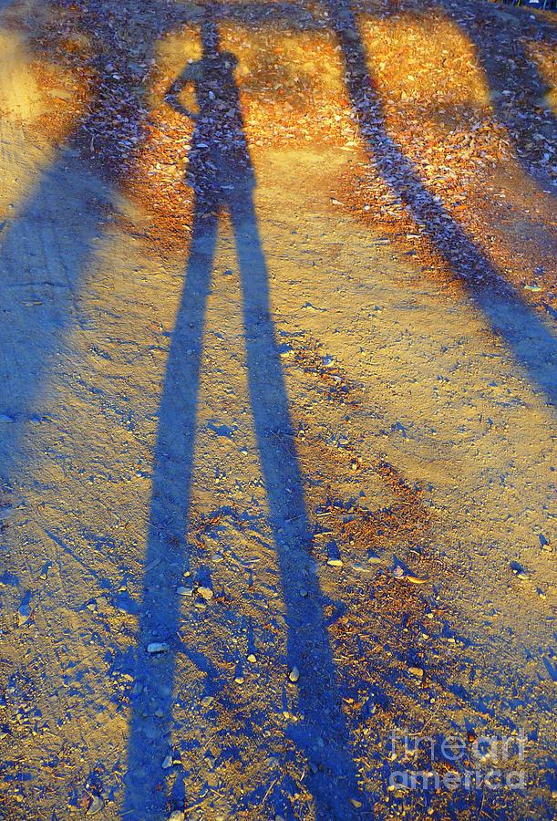 Summertime Legs Photograph