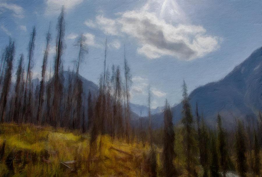 Sun Light In The Forest Digital Art