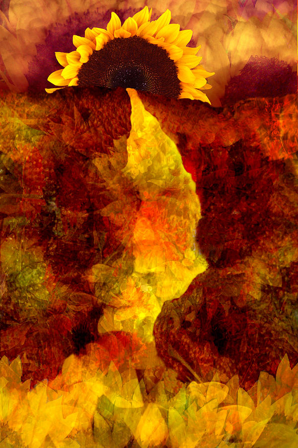 Sunflower Digital Art - Sundown by Tom Romeo