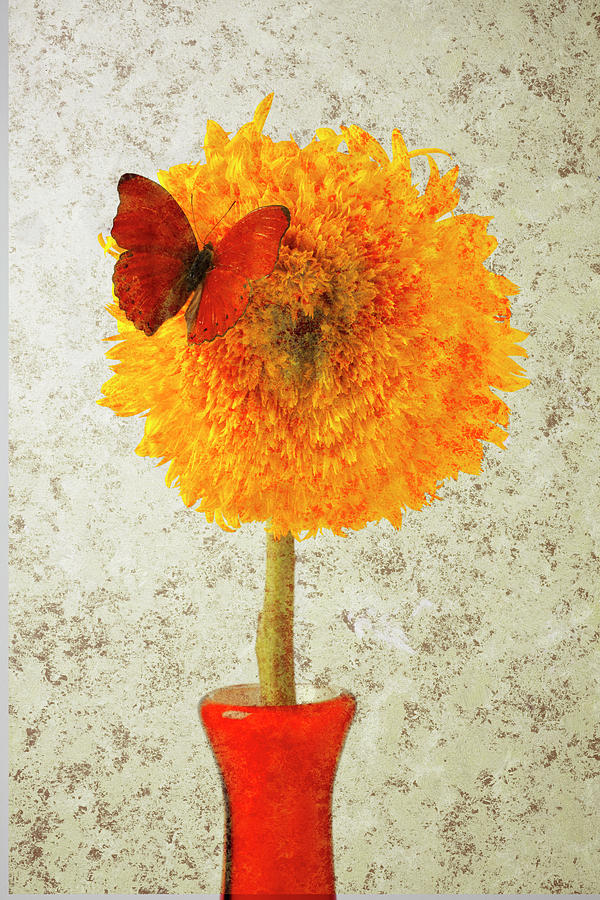 Sunflower And Red Butterfly Photograph