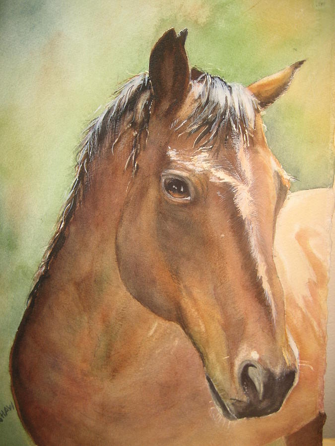 Horse Painting - Sunlit Horse by Patricia Pushaw
