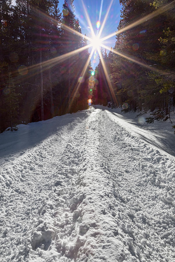 Sunrays And Snow Photograph