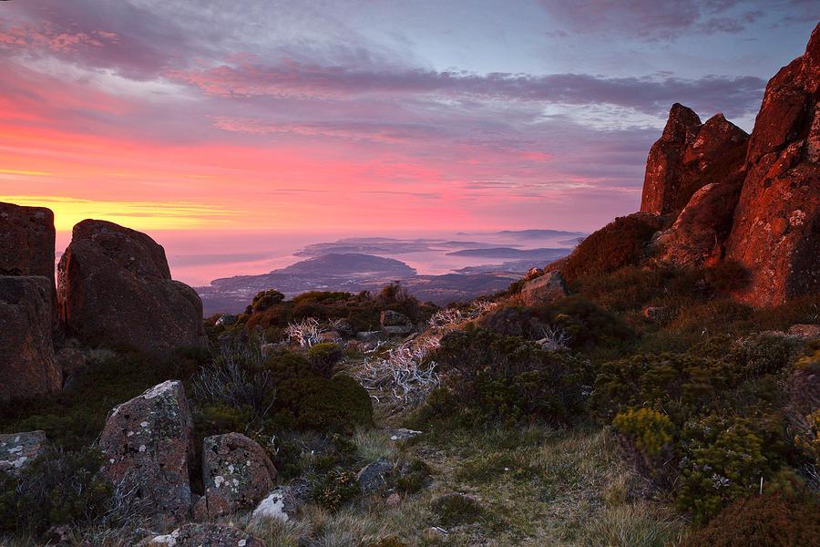 Sunrise From Mount Wellington Tasmania Chris Cobern on Metal Tree Art