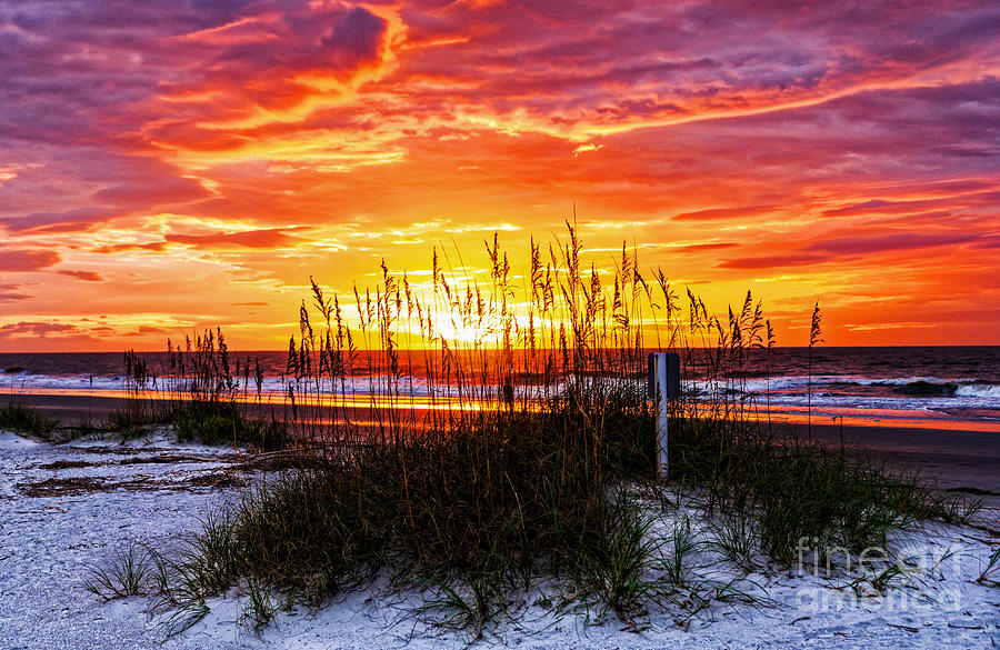 Sunrise Hilton Head Beach Photograph By Paul Mashburn