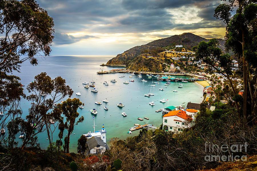 Sunrise On Catalina Island Avalon Bay California Photograph