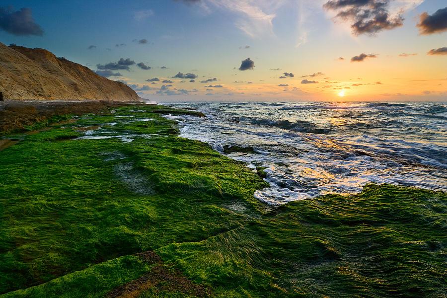 Sunset Photograph - Sunset 01 by Yuri Peress