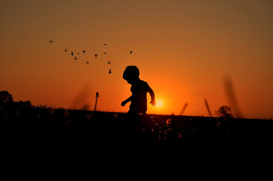 Boy Photograph - Sunset Dreaming by Emily Stauring