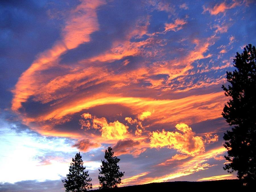 Sunset Photograph - Sunset Extravaganza by Will Borden