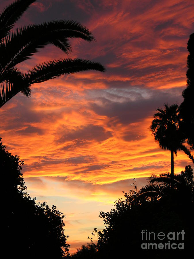 Sunset Photograph - Sunset Gods Fingers In Clouds  by Diane Greco-Lesser