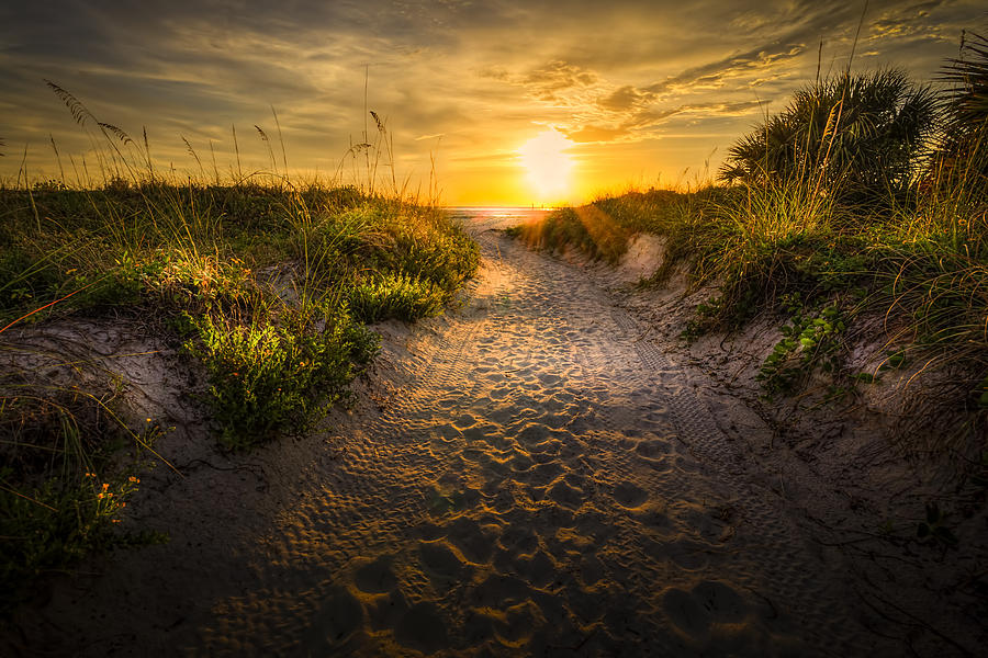Sunset Path is a photograph by Marvin Spates which was uploaded on ...
