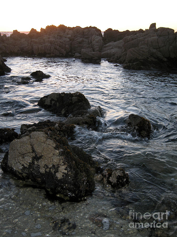 Sunset Tide Photograph