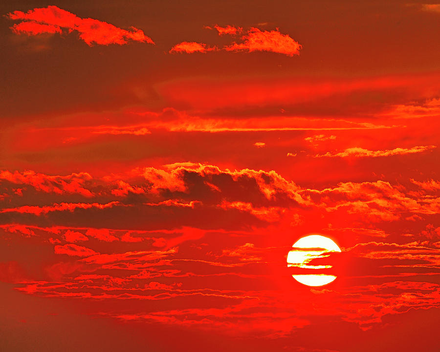 Sunset Photograph - Sunset by Tony Beck
