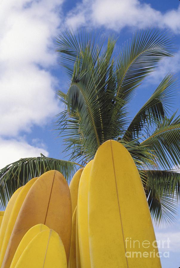 Blue Photograph - Surfboard Concession by Bob Abraham - Printscapes