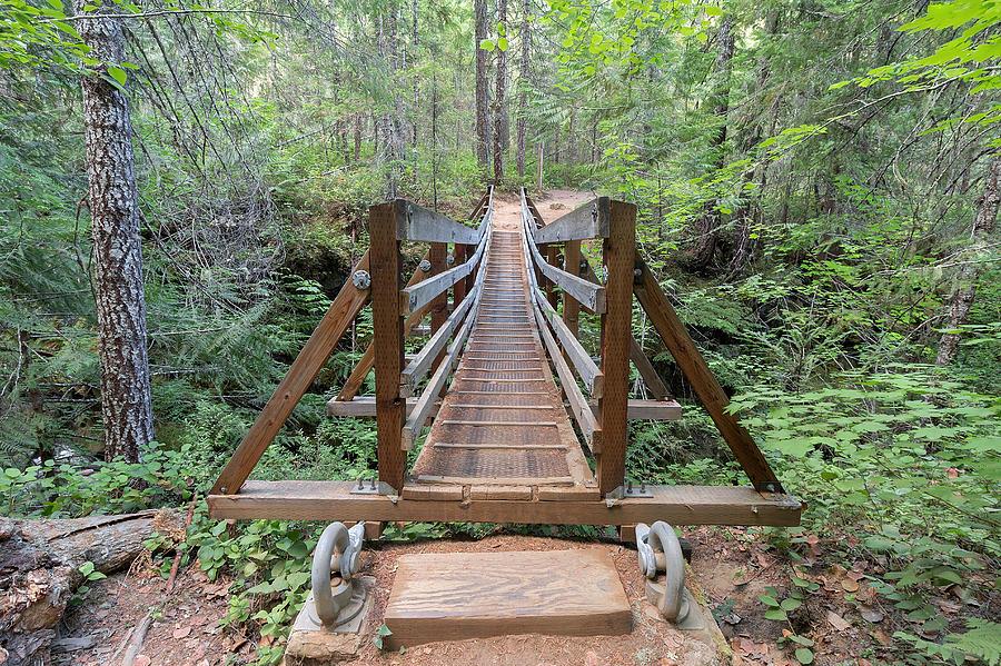 how to build a suspension bridge over a creek